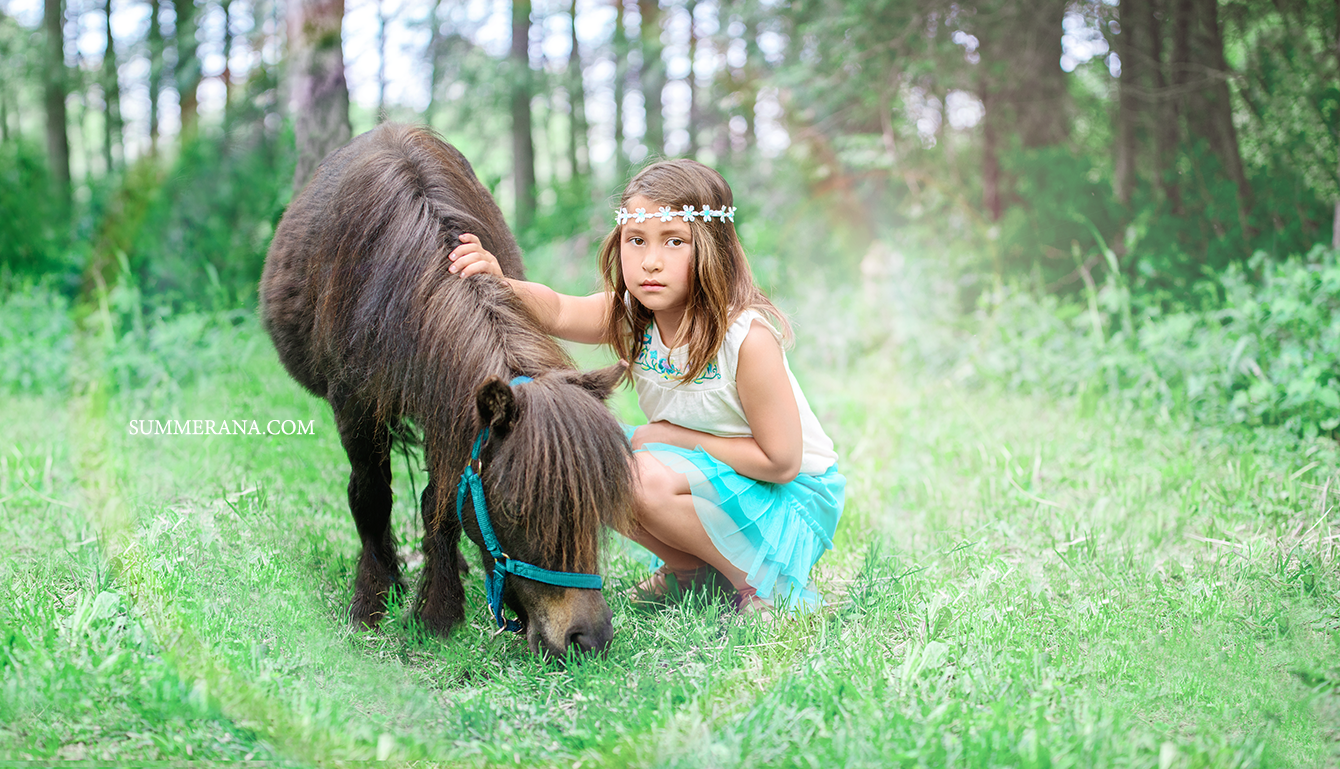 TouchofSmilesPhotoshoot by Summerana, Sponsor a Miniature Horse