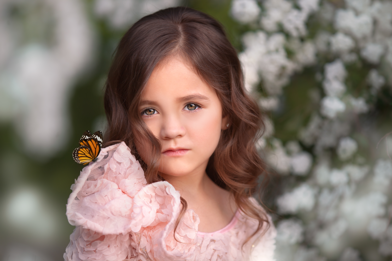 butterfly-overlays-and-photoshop-actions-for-photographers