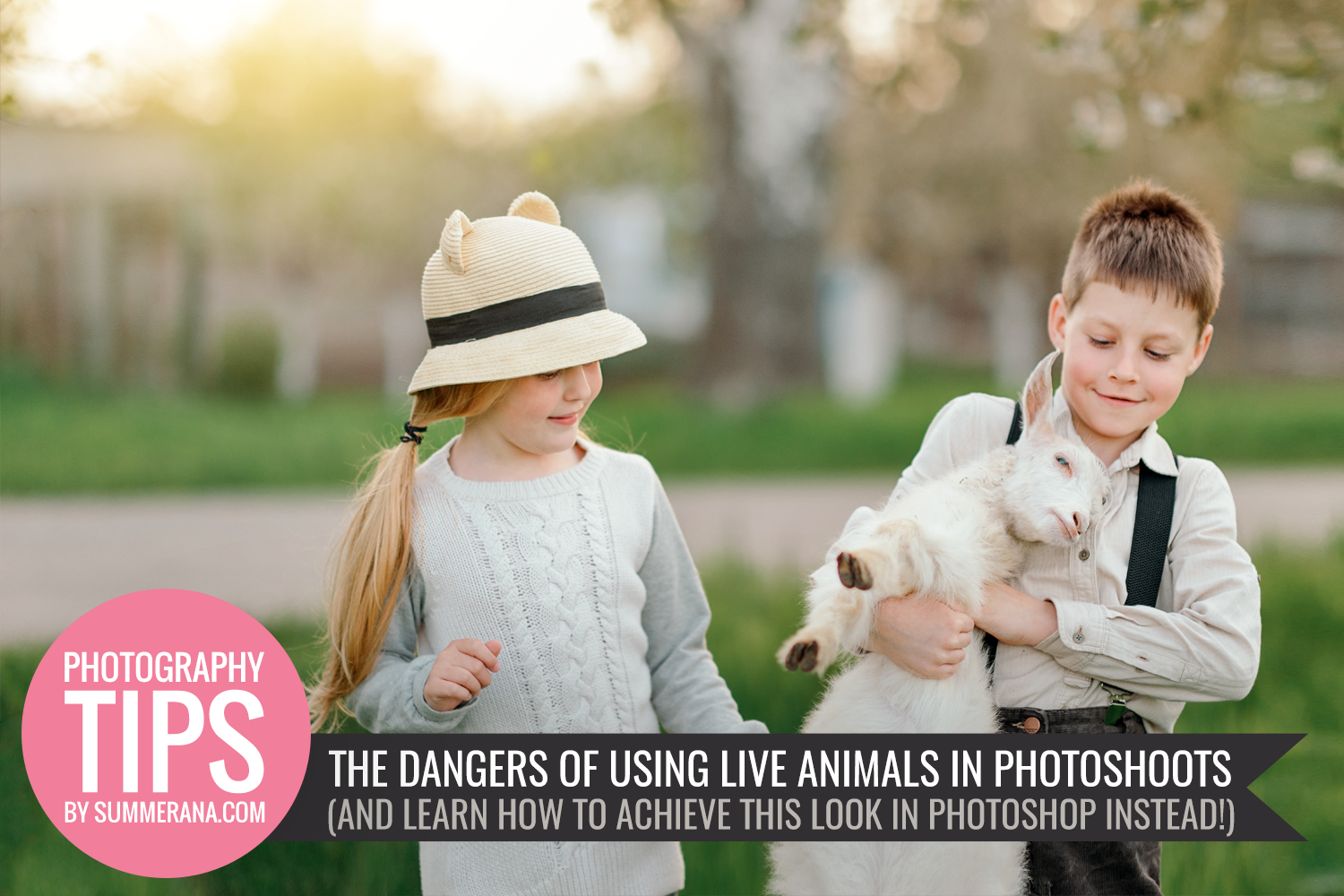 The-dangers-of-photographing-live-animals-and-Learn-How-to-Achieve-this-Look-in-Photoshop-Instead