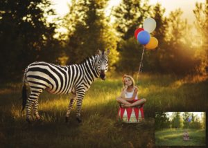 Dancing Stripes – Zebra Animal Overlay and Photoshop Action Collection