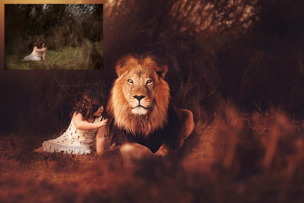 lion-overlays-for-photographers-by-summerana-photoshop-actions-for-photographers