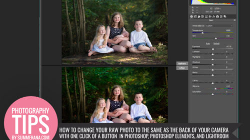 How to Change your RAW Photo to the Same as the Back of your Camera with one Click of a Button in Photoshop, Photoshop Elements, and Lightroom