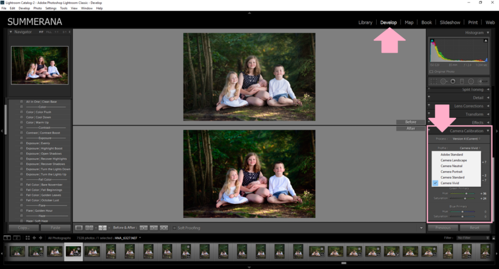 How-to-change-your-RAW-photo-to-the-same-as-the-back-of-your-camera-with-one-click-of a-button-in-lightroom