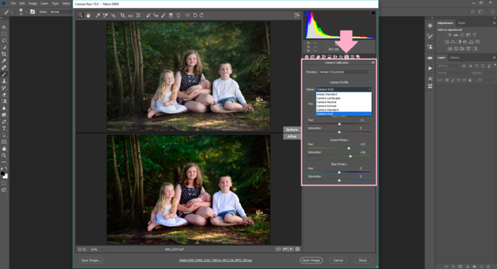 How-to-change-your-RAW-photo-to-the-same-as-the-back-of-your-camera-with-one-click-of a-button-in-photoshop