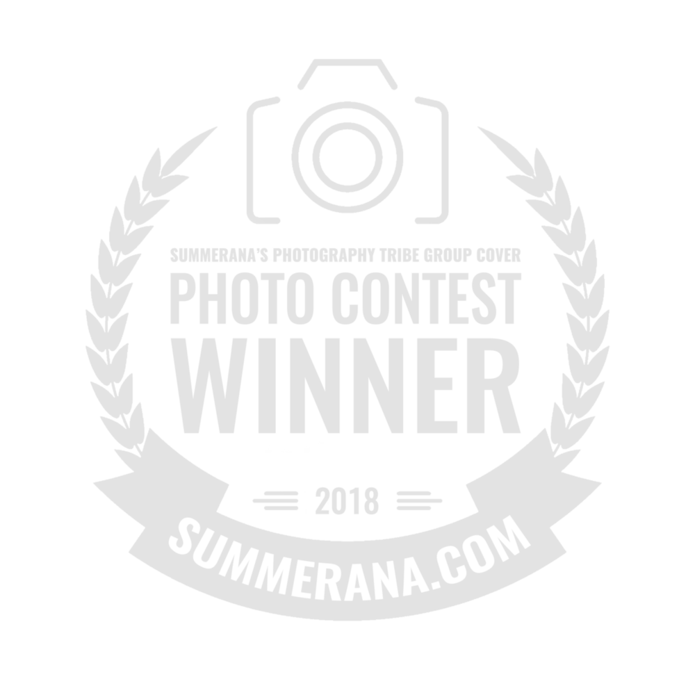 summerana-photoshop-actions-for-photographers-group-cover-photo-contest-winner