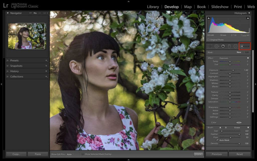 8-key-tools-you-should-be-familiar-with-in-lightroom-classic-adjustment-brush